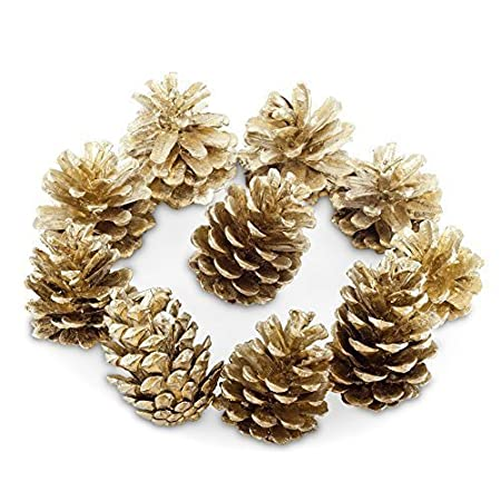 pack of 10 gold real fir pine cones christmas decorations