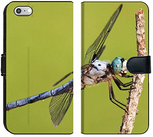 Apple iPhone 6 Plus and iPhone 6s Plus Flip Fabric Wallet Case Blue Eyed Dragonfly That is Covered with Hair Image 21453994 Customized Tablemats Stain