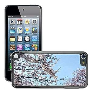Print Motif Coque de protection Case Cover // M00154212 Sakura flor de cerezo de la primavera // Apple ipod Touch 5 5G 5th 6 6G 6th