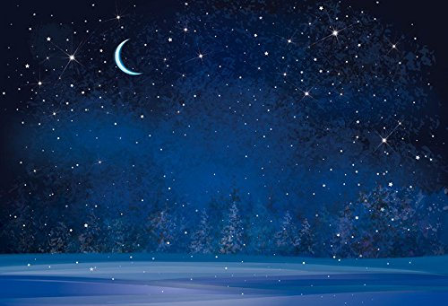 Yeele 10x6.5ft Winter Night Snowfall Snowflake Photography Backdrops Starry Sky Moon Blurry Fir Trees Pine Forest Background Merry Christmas Happy New Year Party Banner Decoration Studio Props