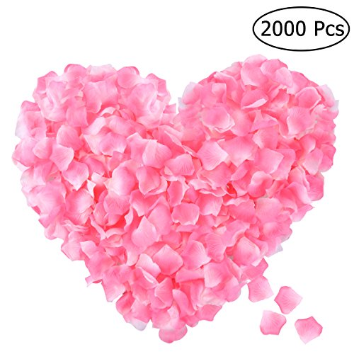 (ETEREAUTY Rose Petals, 2000pcs Silk Rose Petals Artificial Flower Petals for Wedding Confetti Flower Girl, Romantic Night and Valentine Day Flower Decoration Pink)