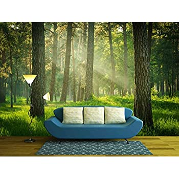 Amazoncom wall26 Park Beautiful misty old forest Removable
