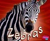 Zebras, Catherine Ipcizade, 1429612517
