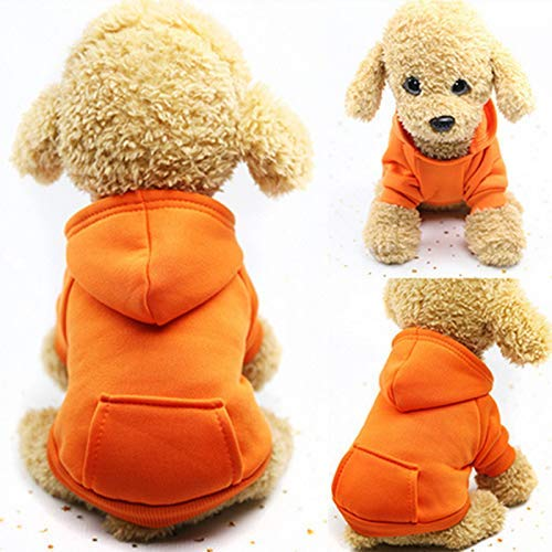 Idepet Perro Gato Sudadera con Capucha Mascota C/álido Abrigo de Invierno Ropa de algod/ón para Perros con Bolsillo Exterior para Perros peque/ños