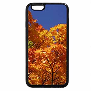 iPhone 6S Plus Case, iPhone 6 Plus Case, Autumn 2012