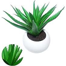 Suculenta Planta Artificial Cacto Ornamentacao Vaso Branco Festa (BSL-SH-3)