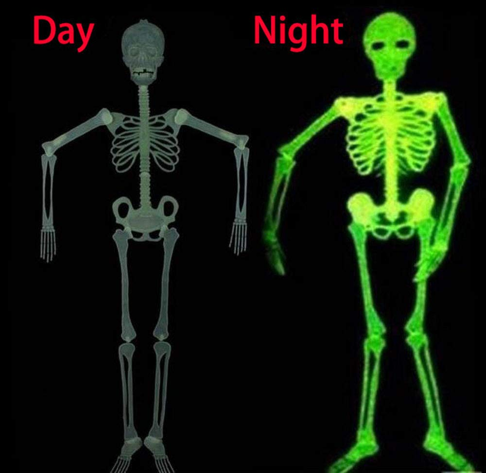 Halloween 5 Ft Skeleton Luminous Glow-in-The-Dark Skeleton for Halloween Party Bar Wall Sticker Decorations Outdoor Yard Garden Hanging Ornaments Props (5ft Skeleton) by Hongtu