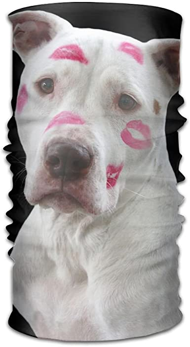 Magic Headwear Cute Pet Dog Outdoor Scarf Headbands Bandana Mask Neck Gaiter Head Wrap Mask Sweatband