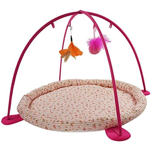 orange Yzibei cozy Pet Supplies Cat Bed Cat Hammock Toy Exercise Playful Bed (color   orange)