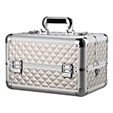 Bory Makeup Train Case Portable Travel Makeup Case Professional Cosmetic Cases Makeup Storage Organizer Box Organizer Portable Artist Storage Cases Large Silver