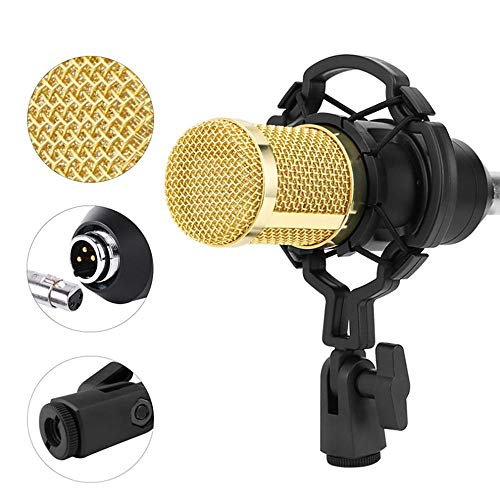 Puyong BM-800 Condenser Microphone Kit with Adjustable Microphone Holder and Double-Layer Filter Suitable for Recording Broadcasting Singing,Pink
