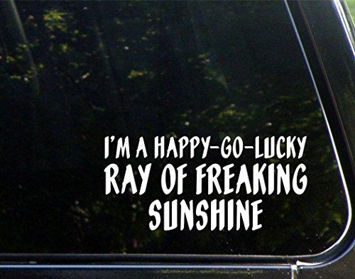 I'm A Happy-Go-Lucky Ray of Fricken Sunshine - 8