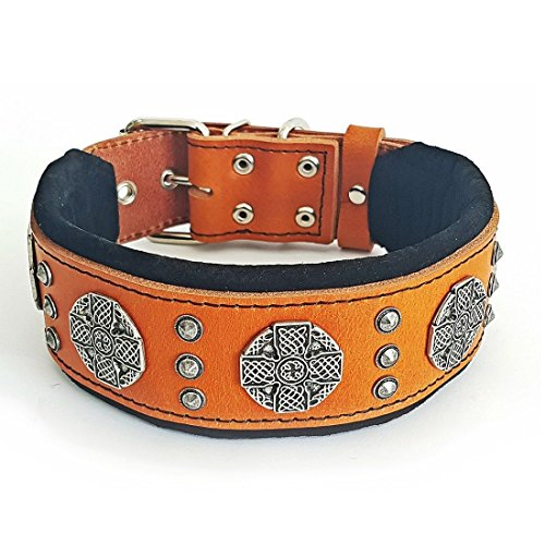 Bestia Maximus genuine leather dog collar, Large breeds, cane corso, Rottweiler, Boxer, Bullmastiff, Dogo, Quality dog collar, 100% leather, studded, M- XXL size, 2.5 inch wide. padded. Made in Europe ()