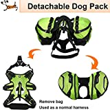 Pettom Dog Saddle Backpack 2 in 1 Saddblebag&Vest...