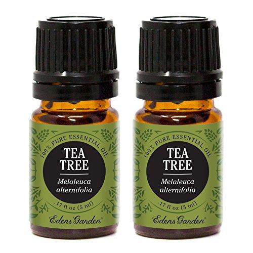 Edens Garden Tea Tree 5 ml Value Pack 100% Pure Undiluted Th
