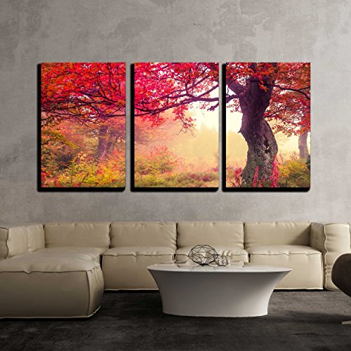 Majestic Landscape with Autumn Trees in Forest Carpathian Ukraine Europe x3 Panels