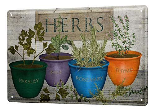 Tin Sign Kitchen Decor Parsley sage rosemary thyme potted herbs 8X12