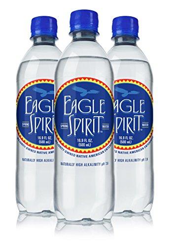 Eagle Spirit Spring Water