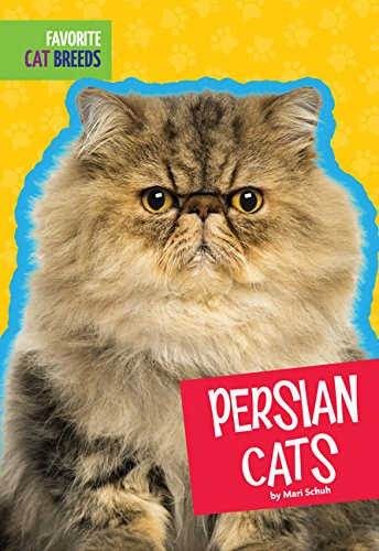 Persian Cats (Favorite Cat Breeds) (Persian Pictures Cats)