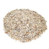 LYTIO - Decorative Granulated White 5LB Pebble Rocks Different Shapes and Sizes from Mexico's Finest Beaches, 100% Organic Non Toxic Decorate your Home, Garden, Office, Pond, Pots
