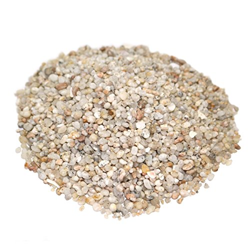 LYTIO - Decorative Granulated White 1LB Pebble Rocks Different Shapes and Sizes from Mexico's Finest Beaches, 100% Organic Non Toxic Decorate your Home, Garden, Office, Pond, Pots by LYTIO