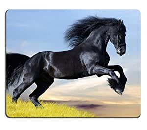 black horse equine pony gallpoing field Mouse Pads Customized Made to Order Support Ready 9 7/8 Inch (250mm) X 7 7/8 Inch (200mm) X 1/16 Inch (2mm) High Quality Eco Friendly Cloth with Neoprene Rubber Liil Mouse Pad Desktop Mousepad Laptop Mousepads Comfortable Computer Mouse Mat Cute Gaming Mouse pad