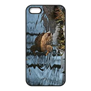 The Duck Hight Quality Plastic Case for Iphone 5s by icecream design