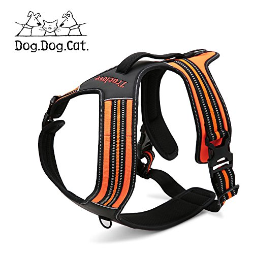 No Pull Active Dog Reflective Harness (MED, orange)