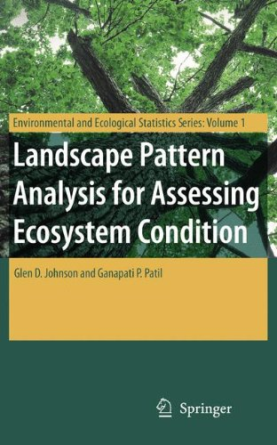 Landscape Pattern Analysis for Assessing Ecosystem Condition (Environmental and Ecological Statistics)