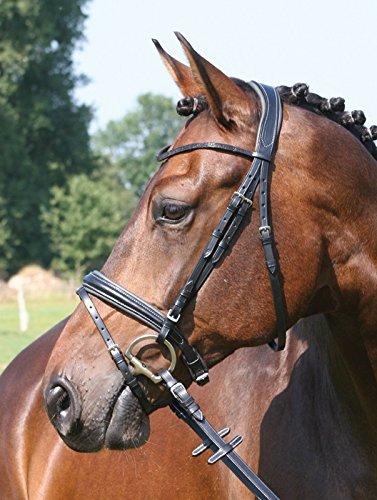 Hans Melzer Briglia Liepe Taglia  sottosella Pony VS Saltando Saltando Saltando colore  nero 870b4f