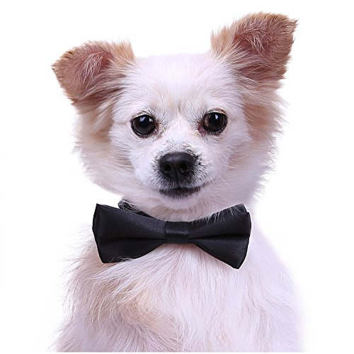 (Dog Bow Tie Collar for Small and Medium Dogs Cats Pets Adjustable Bowtie)