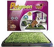 Sanitário para Cães Petgreen Furacão Pet, Verde