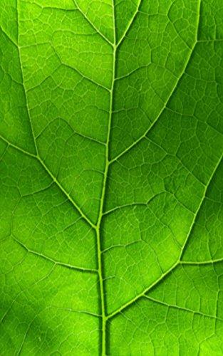 Nook skin green