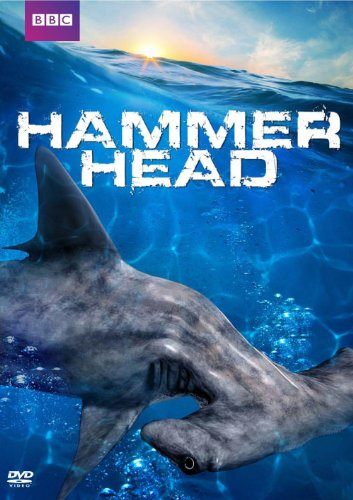 hammerhead-dvd