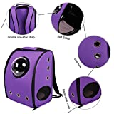 Cheap BOSON Pet Carrier Backpack Traveler Bubble Breathable Outdoor Travel Bag for Small Cat Dog Puppy Kitten (Purple)