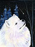 Cheap Caroline's Treasures SS8376CHF Starry Night Samoyed Flag Canvas, Large, Multicolor