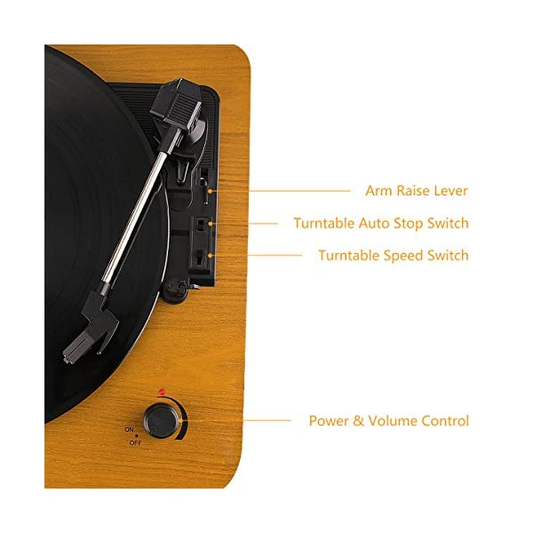Musitrend LP 3-Speed Turntable with Built-in Stereo Speakers, Vintage Style Record Player Support Vinyl-to-MP3 Recording… 5