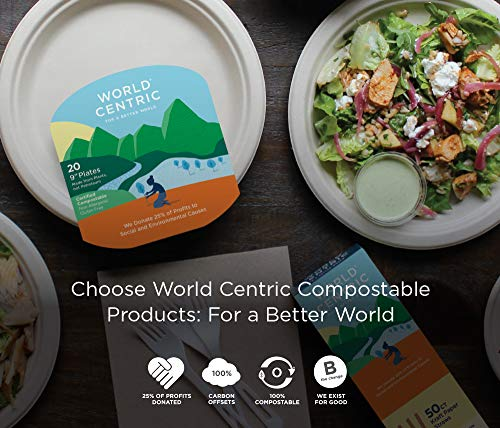 Compostable Knives by World Centric, Made from TPLA, 100% Compostable, 6.7