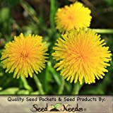 Buy Taraxacum officinale Lawn & Patio