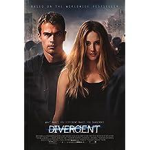 """Divergent 27"""" X 40"""" Movie Poster"""