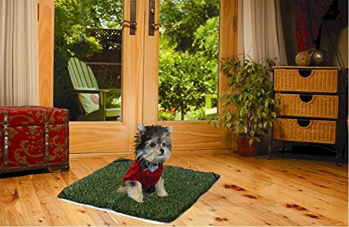 "Pup-Head® Lite Dog Potty 20"" x 20"""