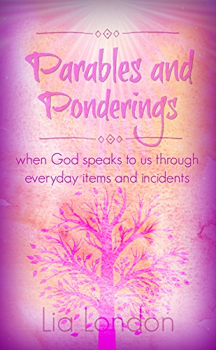 Parables and Ponderings: when God speaks to us through everyday items and incidents (Little Devotionals Book 1)