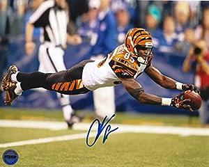 Chad Ochocinco Johnson Cincinnati Bengals Autographed 8x10 Photo FSG Authentic 3