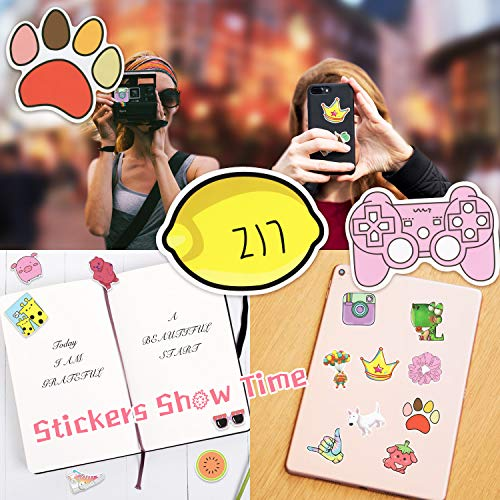 500pcs Random Stickers Pack,Durable Vinyl Stickers for Flask, Laptop,Water Bottles,Skateboard,Luggage,Bicycle