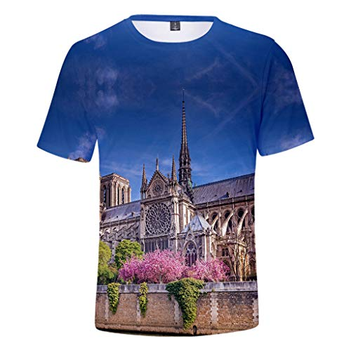 ea5e4a4add Gay store tshirt the best Amazon price in SaveMoney.es