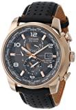 Citizen Men's AT9013-03H Rose Gold-Tone Stainless Steel Eco-Drive Watch