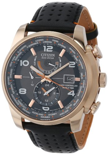 Citizen AT9013 03H Gold Tone Stainless Eco Drive