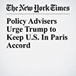 Policy Advisers Urge Trump to Keep U.S. In Paris Accord | Coral Davenport