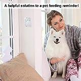 Dog Feeding Reminder, Magnetic Sticker 3 Times a