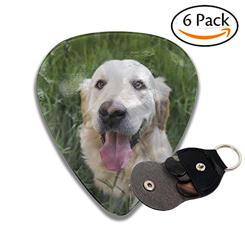 2018 Chinese New Year - Year Of The Dog Dog Year.jpeg 351 Shape Classic Guitar Picks (6 Pack) For Electric Guitar, Acoustic Guitar, Mandolin, And Bass